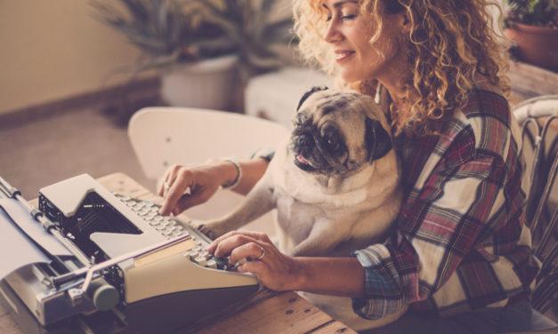 10 Porad dla Początkującego Blogera