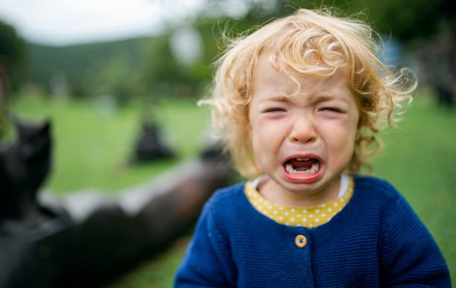 Zbuntowane dziecko płacze