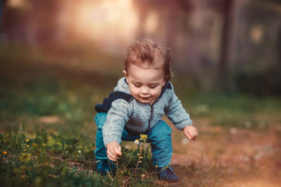Dziecko zrywa kwiat